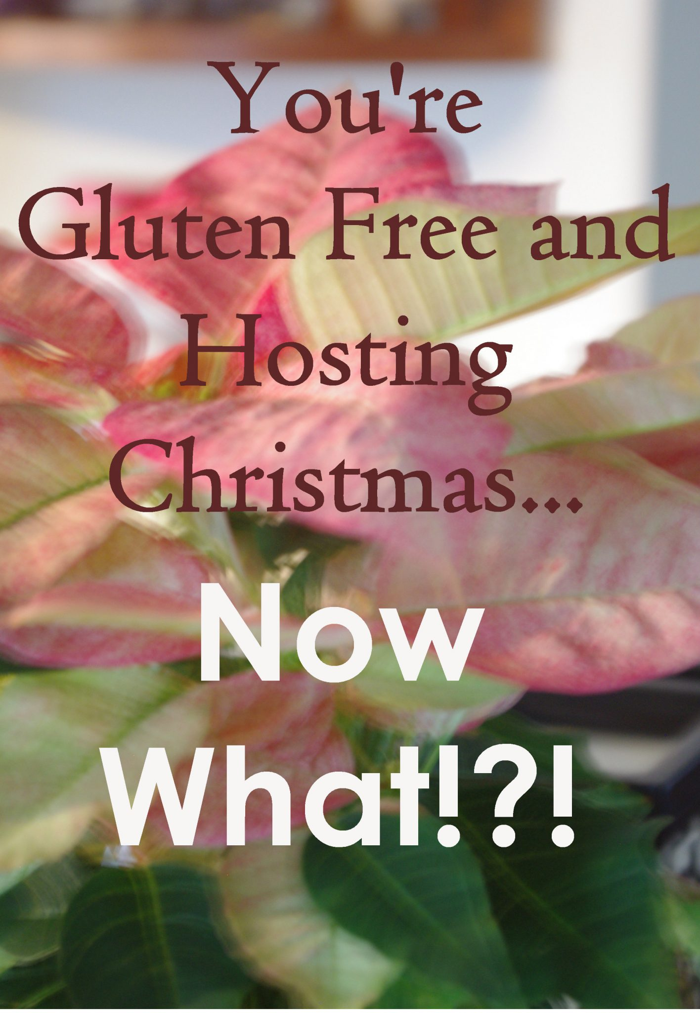 Trying to Host a Gluten Free Christmas
